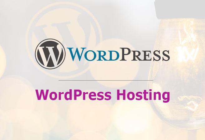 Wordpress Hosting Test Und Vergleich Der Beliebtesten Wp Hoster